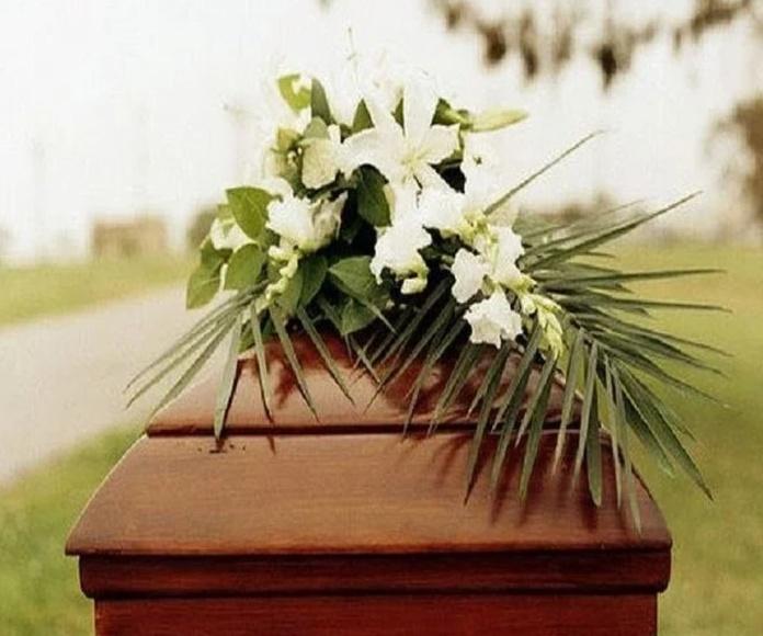 Apoyo funerario: Servicios de Mantenimientos Curros