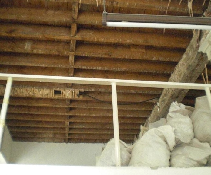 Locales comerciales: Servicios  de Thisan Construcciones y Reformas