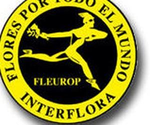 Servicio Interflora a toda Asturias y a toda España
