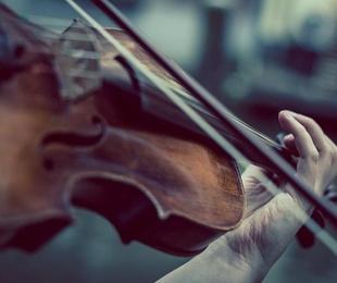 Tipos de violín