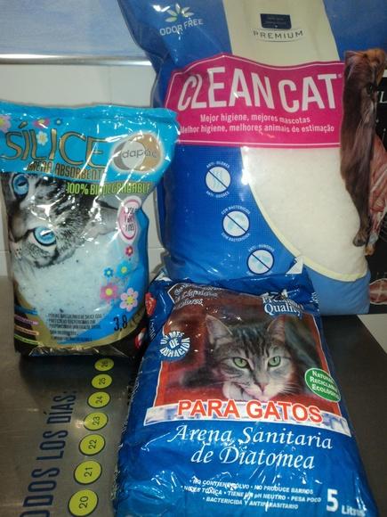 Arena gatos: Catálogo de Clínica Veterinaria Rocafort