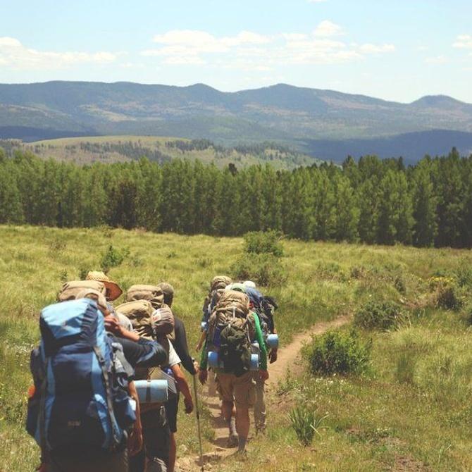 Beneficios de las excursiones