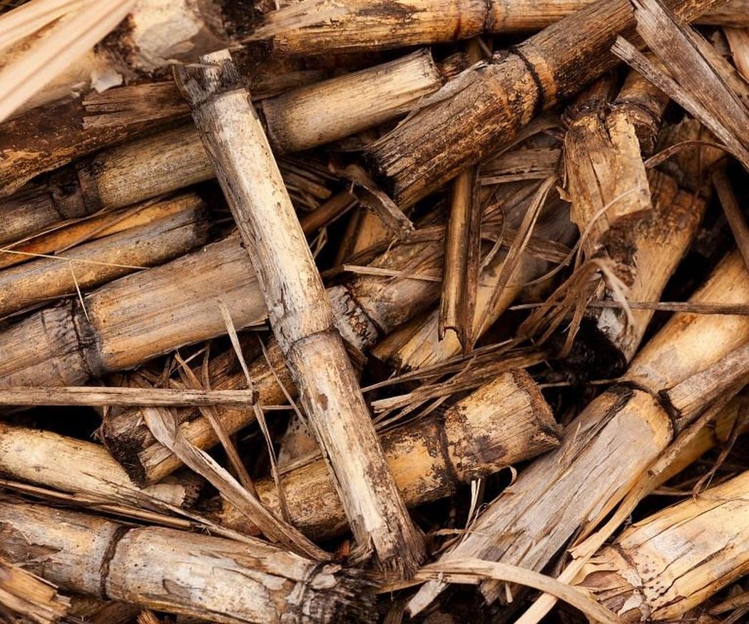 ¿Por qué instalar una caldera de biomasa?