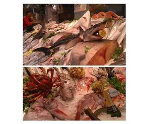 Pescados y mariscos frescos y de calidad en Pozuelo de Alarcón