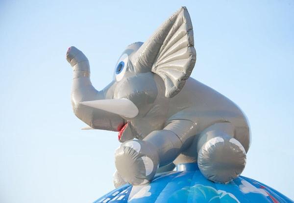 disco fun elefante