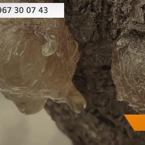 Resinas para pinturas en Albacete | Resinas y Colofonias Modificadas, S.A.