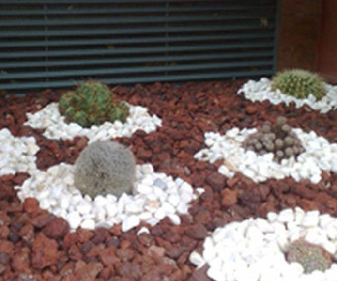 Limpieza de comunidades: Servicios de Mantenimientos y Jardinería La Jara