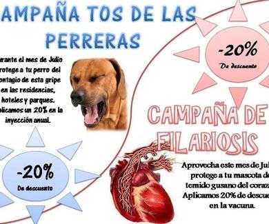 Tos de las perreras en Madrid
