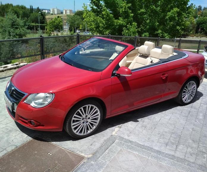 Volkswagen Eos  2.0 Tdi. DPF individual-Cabrio: Venta de vehículos de ocasión de Autos Alvaro