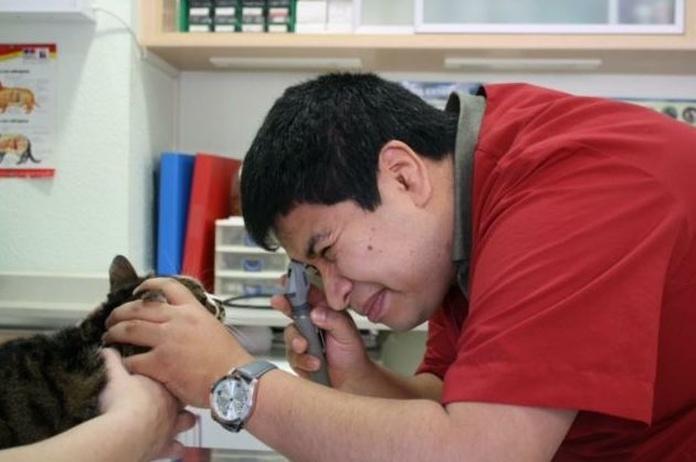 Oftalmología: Servicios de Les Fonts Veterinaria