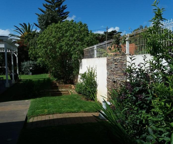 Mantenimiento de jardines: Servicios de GT Verde