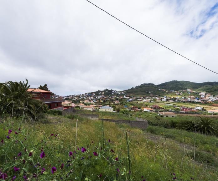 Gonzalianez: CATALOGOS DE CASAS Y TERRENOS de Fundo y Madelar