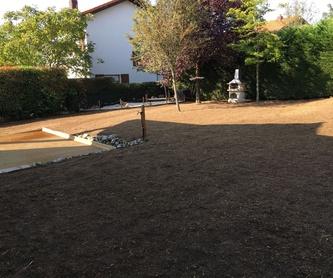 01. Mantenimiento de jardines: Catálogo de Indoor Garden