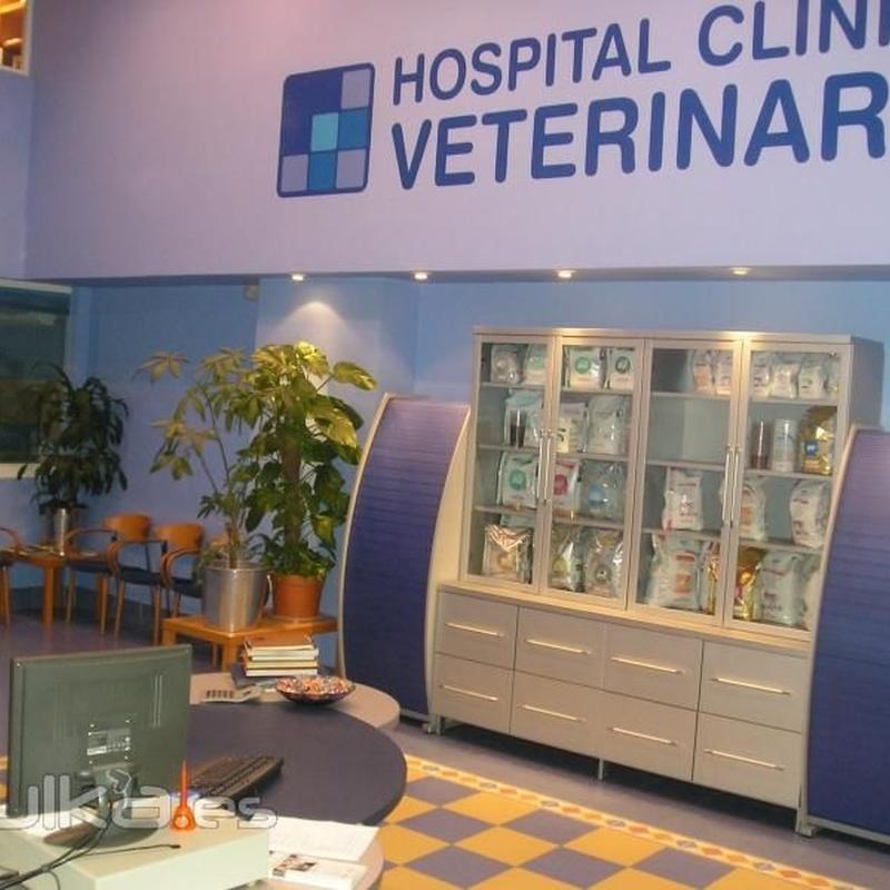 Productos y servicios: Servicios de CLÍNICA VETERINARIA HOSCLIVET (Antes Hospital Clínico Veterinario)