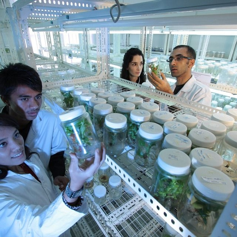 Análisis microbiológico: Servicios de Ainprot, S.A.