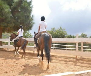 Clases de equitación (salto, doma)