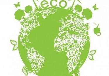 Planta Y Productos Ecológicos.