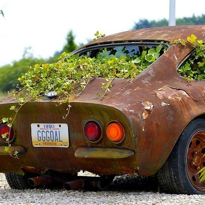 Evita la corrosión en la carrocería del coche