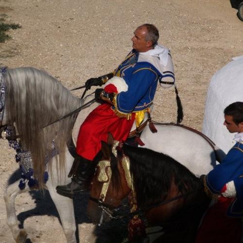 Caballos para rodajes en la Comunidad Valenciana