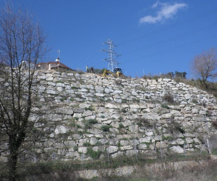 """Dictamen Pericial. """"Patologias en los muros de contención de escollera de un talud localizado entre la calle Alzina, Vallnou y Rossinyol. TM Riells i Viabrea (Girona)."""