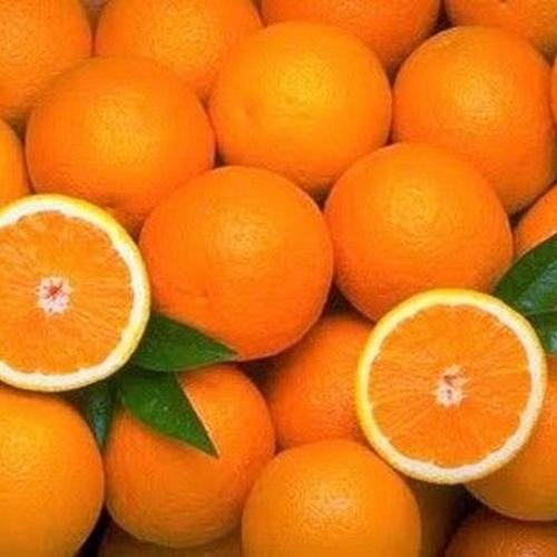 Almacén de frutas y verduras en Almussafes