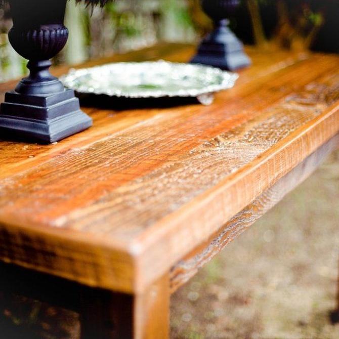Detectar termitas en la madera
