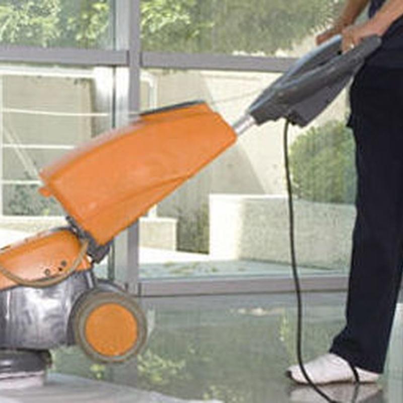 jardines mantenimiento, limpieza y diseño en Móstoles