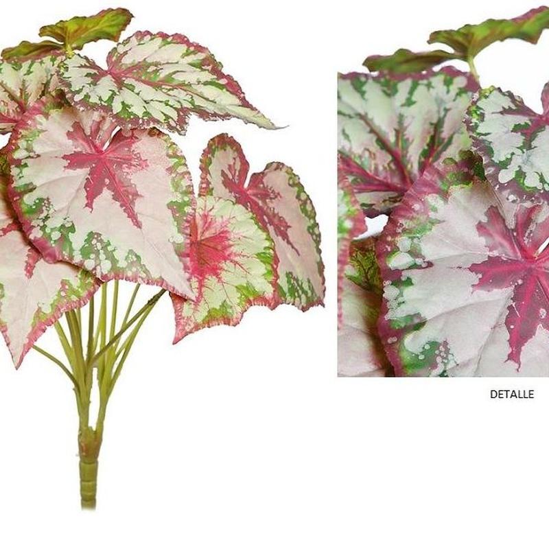 PLANTA BEGONIA TACTO NATURAL (D.38xH.50CM) REF: BXC072539 PRECIO: 5,10€