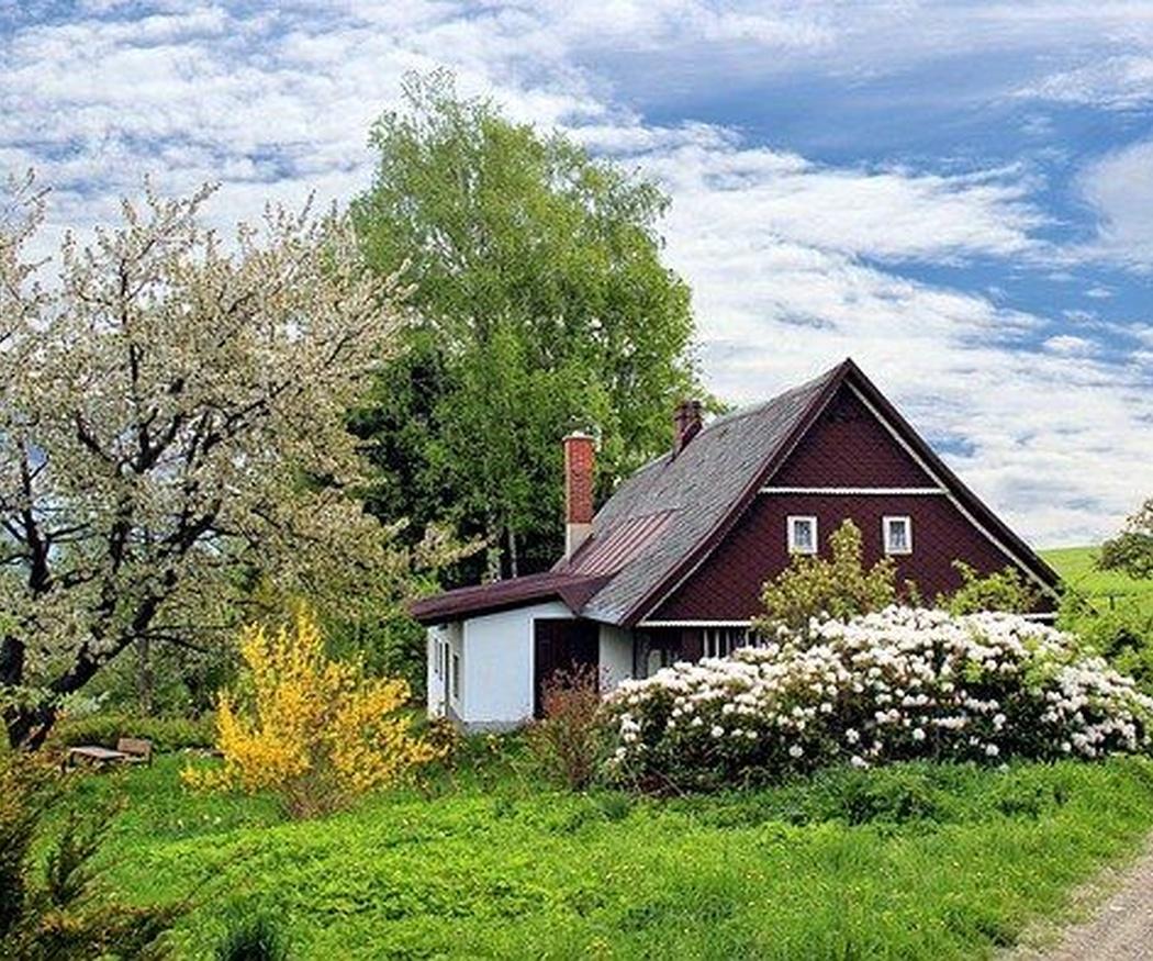 Las claves del jardín inglés