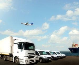 Servicio de gestión y asesoramiento sobre transporte