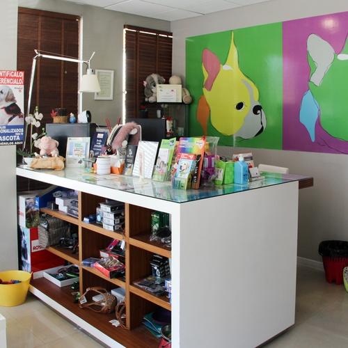 Clínica veterinaria en Boadilla | Habana Boston