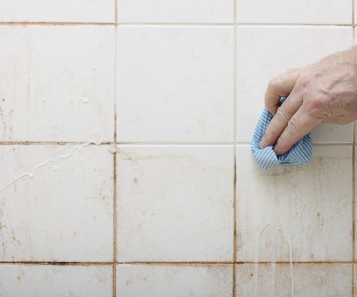 Para Particulares...: Nuestros Servicios de Olisan Limpiezas Integrales