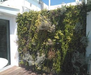 Jardín vertical de planta viva en ático - Palma de Mallorca