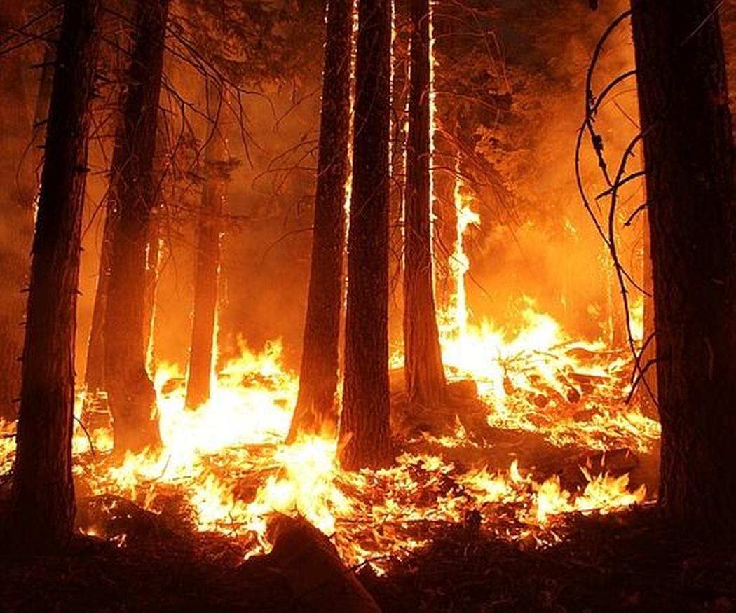 Los cinco incendios más grandes de la historia