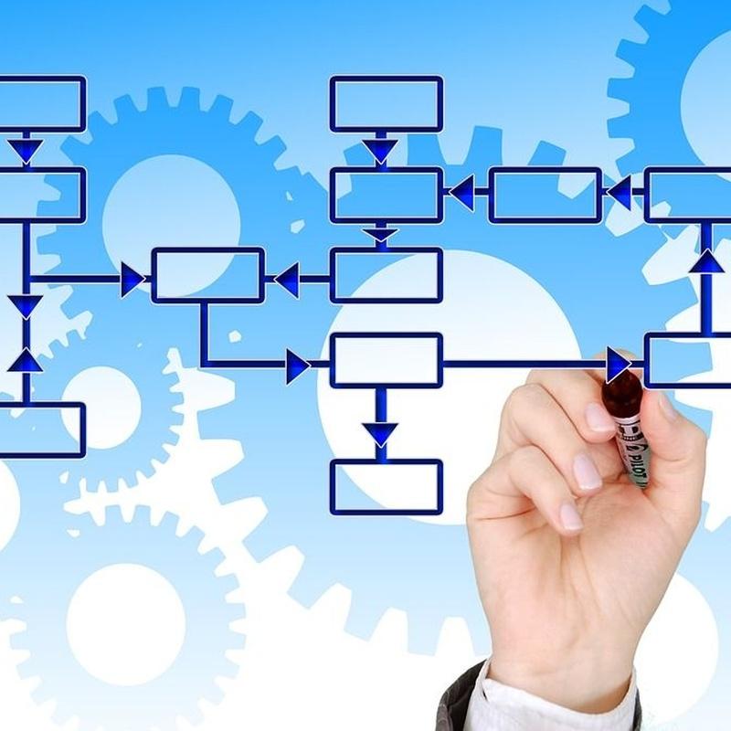 Distribución y logística: Productos y servicios de Moresan Comercial Moreno Santana, S. L.
