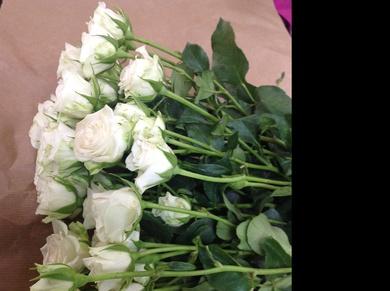 Cuidados para conservar las flores frescas durante más tiempo