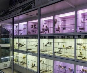 Galería de Tienda de animales en Paterna | Zoolandia