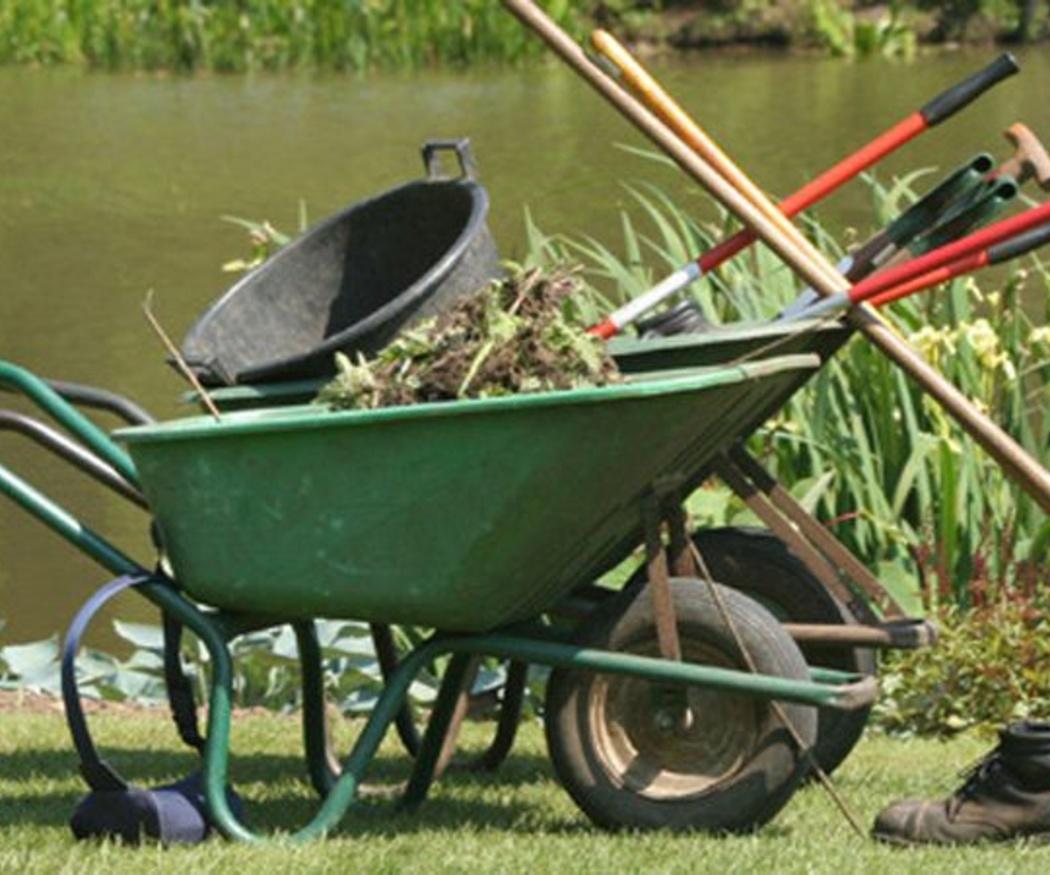 Lo que debes saber sobre el mantenimiento de jardines