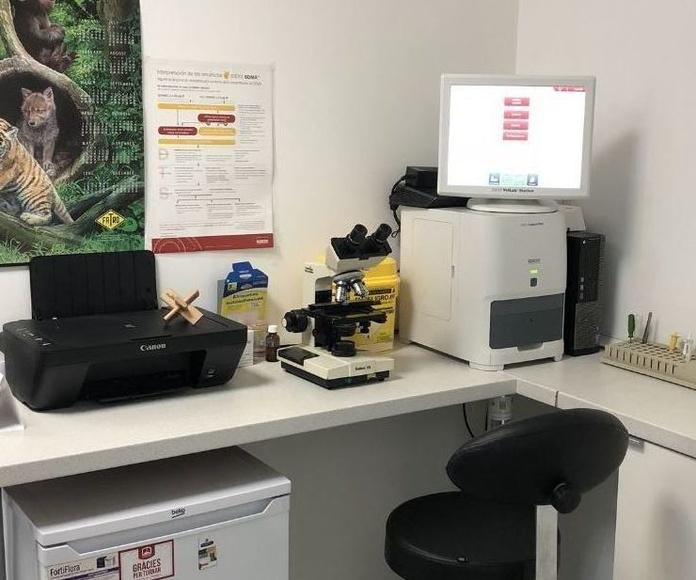 Laboratorio propio: Nuestros servicios de Huellas Centro Veterinario