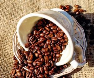 Distribución de café en Albacete