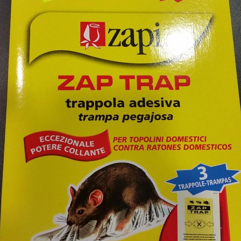 Zapi Contra ratones domesticos: SERVICIOS  Y PRODUCTOS de Neteges Louzado, S.L.