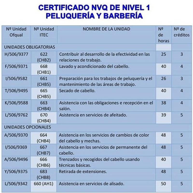 Nivel 1-2-3 NVQ en PELUQUERÍA Y BARBERÍA: Cursos peluquería y estética de Centro de formación Virgen de los Llanos- Moliné
