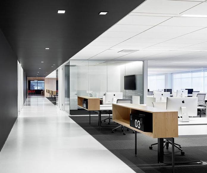 Limpieza de Oficinas, Locales y Centros Comerciales: Servicios de LoMoon Limpiezas