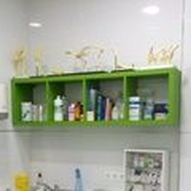 Laboratorio propio de análisis clínicos: Servicios de Clínica Veterinaria Llíria