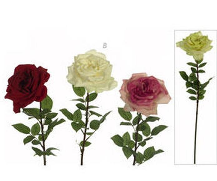 Rosa Grande Abierta Tela