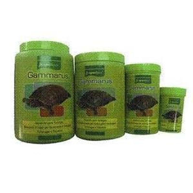 Alimentación para reptiles: Productos y Servicios de Zoolife - Clínica Veterinaria