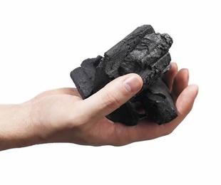 Características del carbón vegetal