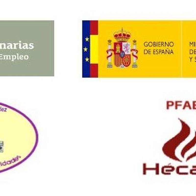 Formación laboral: Proyectos y Servicios de Asociación Domitila
