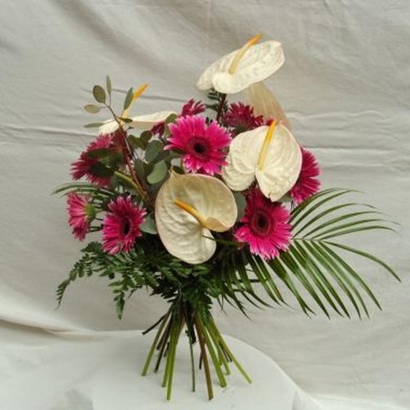 Kioto: Productos de Flores Madrid