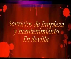 Empresa de limpieza en Sevilla | Master Clean